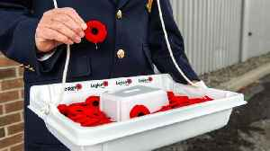 Remembrance Day Theft Sparks Outrage [Video]