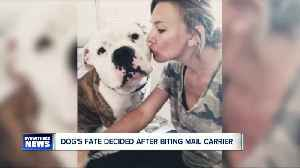 Final decision made on Chunk the pit bull [Video]