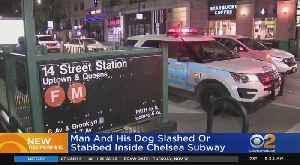 Man And Dog Slashed On Subway Platform [Video]