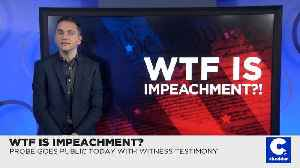 WTF Is Impeachment?! [Video]