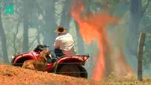 News video: Bushfires: What Causes Them?