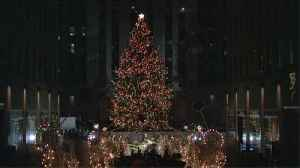 Things You May Not Have Not Known About the Rockefeller Tree Tradition [Video]
