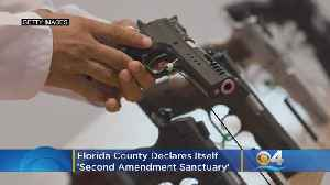 Florida County Declares Itself 'Second Amendment Sanctuary' [Video]
