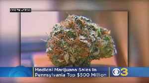 Medical Marijuana Sales In Pennsylvania Top $500 Million [Video]