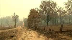 Lack of forecast rains to prolong Australian bushfires threat [Video]