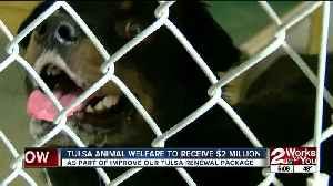Tulsa Animal Welfare Shelter getting extra funding [Video]