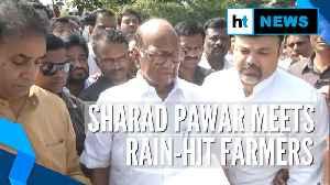 Sharad Pawar meets farmers hit by crop loss amid Maharashtra political drama [Video]