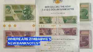 Zimbabwe is still suffering from an economic crisis [Video]