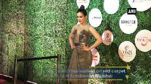 Shahid Kiara and Karan Johar attend award function in Mumbai [Video]