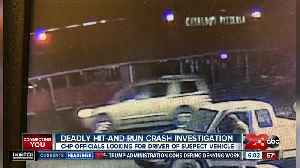 Deadly Hit-and-Run Crash Investigation [Video]