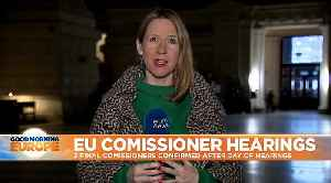 MEPs reject Hungary's pick for EU commissioner but approves those of France and Romania [Video]