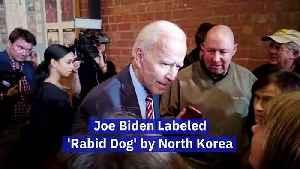 Joe Biden Labeled 'Rabid Dog' by North Korea [Video]