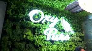 'Oxygen Bar' sells puff of fresh air to pollution-hit Delhi [Video]