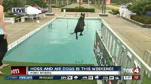 Season 4 Giving: Air dog event helps Gulf Coast Humane Society [Video]