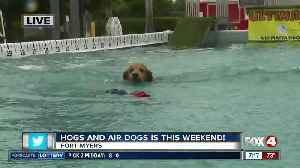 Season 4 Giving: Hogs and Air Dogs in Fort Myers this weekend [Video]