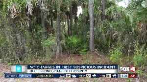 No charges in first suspicious incident in Port Charlotte park [Video]