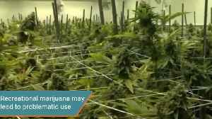 Recreational Marijuana Use May Lead to Problematic Uses [Video]