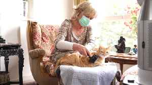 WEB EXTRA: Vaccine Could Eliminate Cat Allergies [Video]