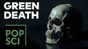 How to Die in an Eco-Friendly Way | Green Death 101 [Video]