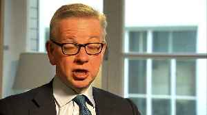 Gove 'unaware' of alleged Brexit Party pacts [Video]