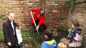Swinson plants tree to dig into Tories over pledge clash [Video]