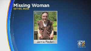 Man Charged After Young Woman From Bethel Park Goes Missing [Video]