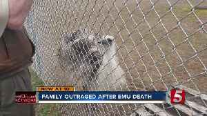 Family outraged after emu death [Video]