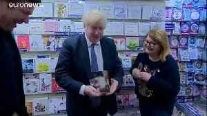 Boris versus Binface: The barmiest battles in Britain's 'Brexit election' [Video]