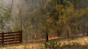 Bushfires continue to burn across Australia's east coast [Video]