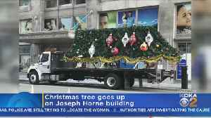 Horne Christmas Tree Goes Up [Video]