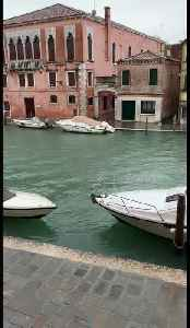 Eerie flood warning siren on the Grand Canal in Venice [Video]