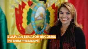 Meet Bolivia's new interim president: Jeanine Añez [Video]