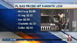 Florida gas prices hit a 9-month low [Video]