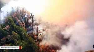 Someone Wants PG&E To Pay $280 Million For Emerald Destroyed In California Fire [Video]