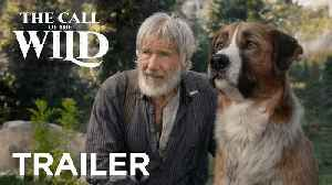 The Call of the Wild movie  - Harrison Ford, Dan Stevens [Video]