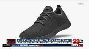 Allbirds Claiming Amazon Stole Shoe Design [Video]