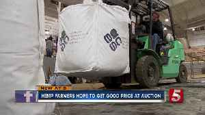 Slow start to auction as hemp farmers hope for sales [Video]