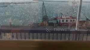 Thundering hailstorm batters New Zealand port [Video]