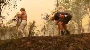 VIDEO: Woman saves koala from bushfires in Australia [Video]