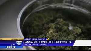 Chico City Council to discuss commercial cannabis proposal [Video]