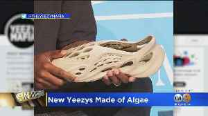 Eye On Entertainment: New Yeezy Shoes Made From Algae Foam [Video]