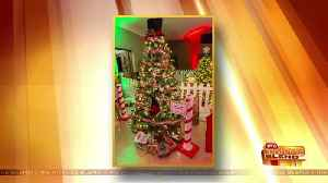 The Third Annual 'Feztival' of Trees! [Video]