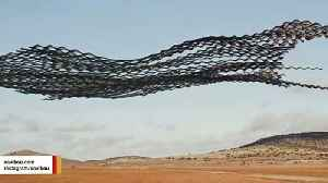 Flocks Of Birds Look Like Giant Sculptures In Amazing Photos [Video]