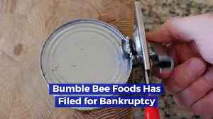 Bumble Bee Foods Has Filed for Bankruptcy [Video]