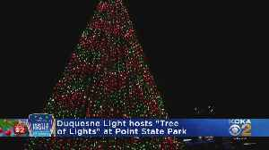 'Tree of Lights' Held At Point State Park [Video]