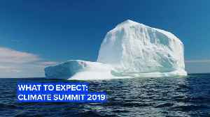 What to expect at the U.N. Climate Change summit [Video]