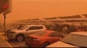 Australia bushfires' smoke blankets Sydney