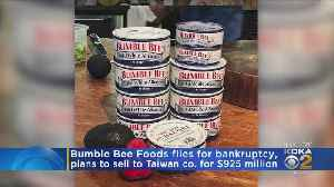 Bumble Bee Tuna Company Files Bankruptcy [Video]