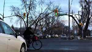 News video: Oblivious cyclist runs red light, has close call with SUV