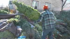 News video: Christmas Trees Are Already In Demand